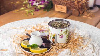 Herbata z zielin_glowna